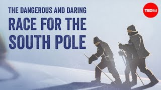 The dangerous and daring race for the South Pole - Elizabeth Leane