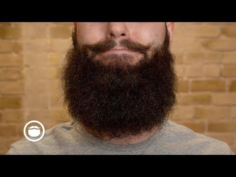 Why Beards Stop Growing | YEARD WEEK 29