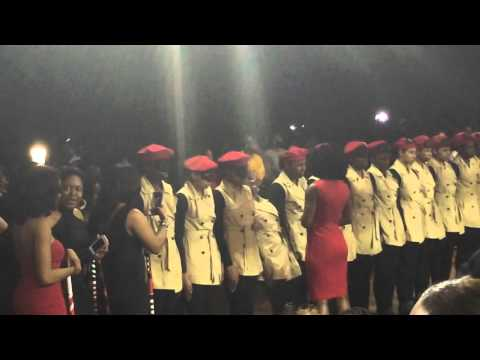 DST Spring 2016 UNC Chapel Hill - Domino Effect