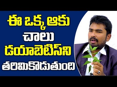 Only 1 Leaf To Cure Diabetes Permanently || Herbal Remedies For Diabetes || DoctorsTV