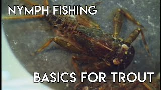 Nymph Fishing Basics for Trout