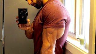 Mr Triceps - Workout Motivation ????