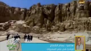 شاهد.. عالم مصريات: خطأ تاريخي في امتحان لغة عربية