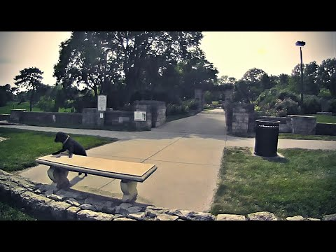 Cleveleymere, near Garstang, Lancashire from YouTube · Duration:  1 minutes 43 seconds