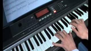 A Succubus In Rapture (Dimmu Borgir keyboard cover)