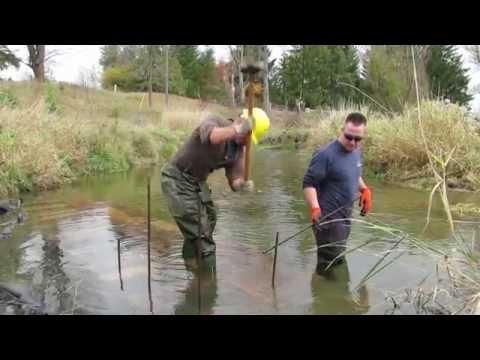 Building Fish Habitat