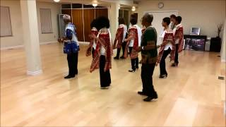 AMI OH LINE DANCE (Vivienne Scott)