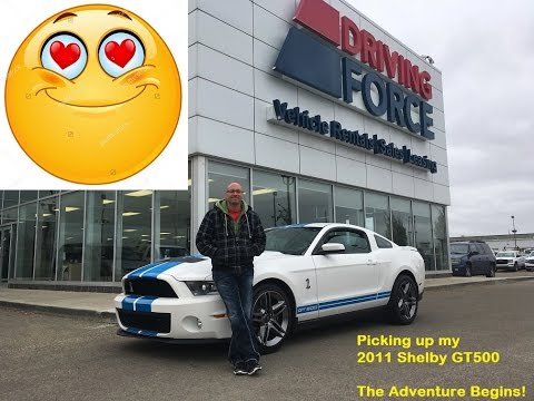 4000KM, 44 Hours of Driving, One 2011 Shelby GT500