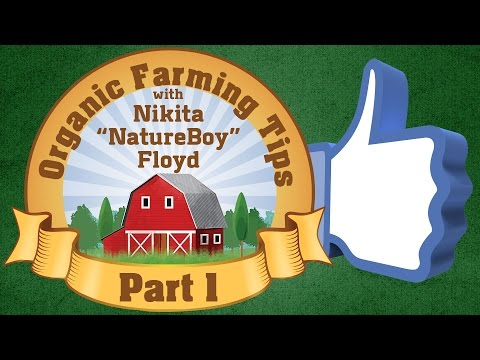"Black Health and Wealth Show | Organic Farming Tips With Nikita ""NatrureBoy"" Floyd 