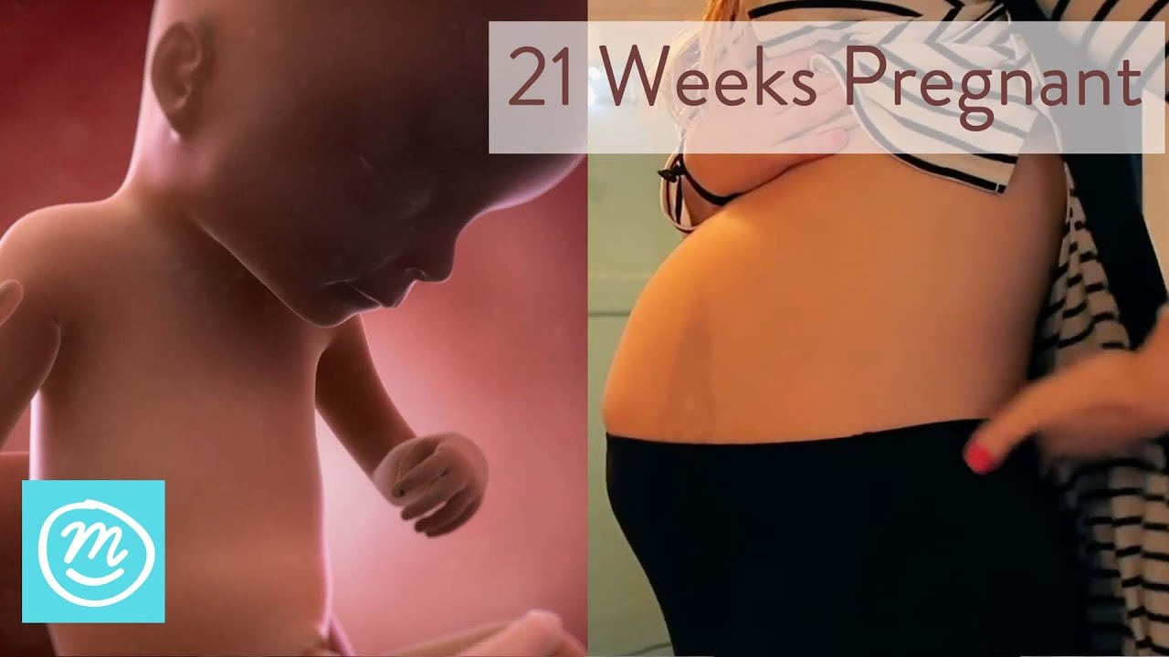 21 Weeks Pregnant: What To Expect - Channel Mum