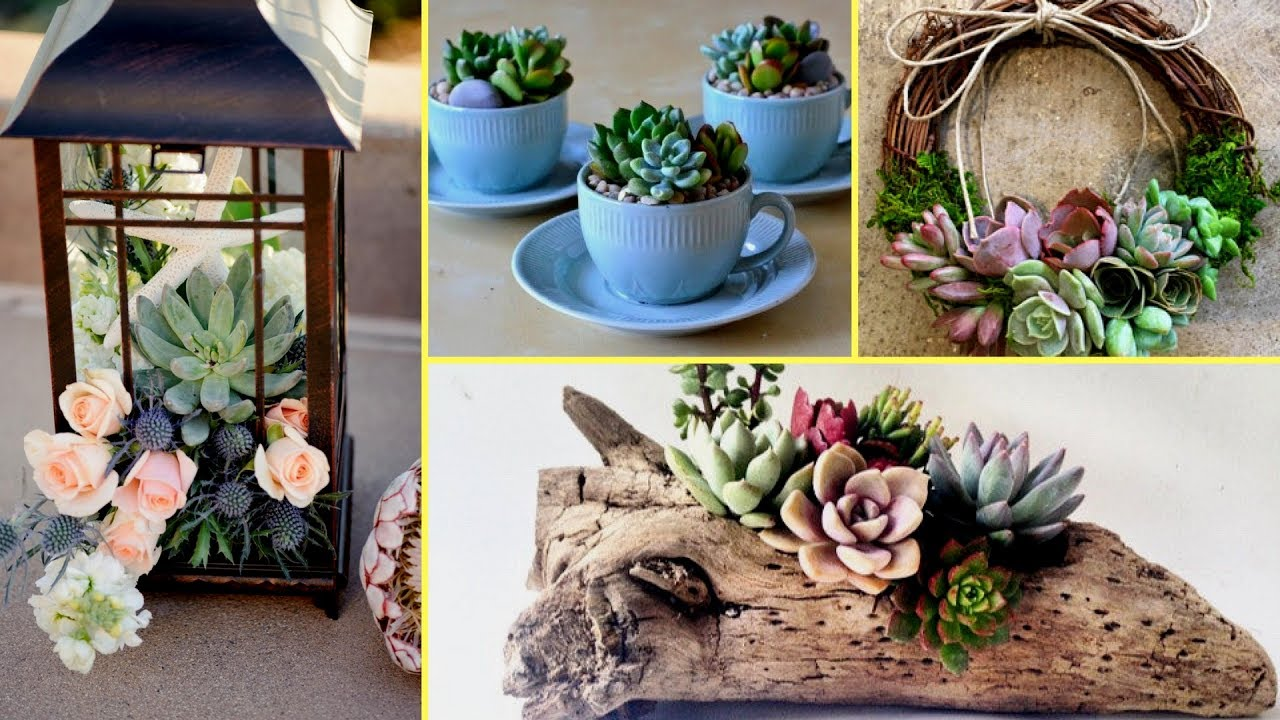 DIY Succulent Plant Terrarium Ideas I Home Decor Ideas