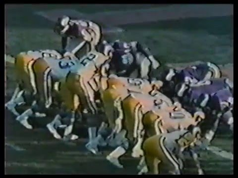 Minnesota Vikings • 1974 Highlights