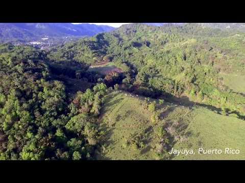 Short Clip: Jayuya, Puerto Rico