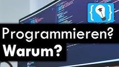 Warum sollte man Programmieren lernen?