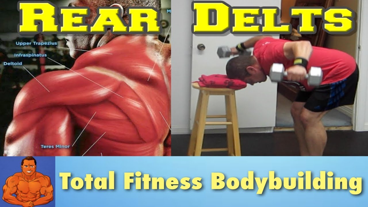 Isolate Your Rear Delts Bent Over Fly Dumbbell Exercise Youtube