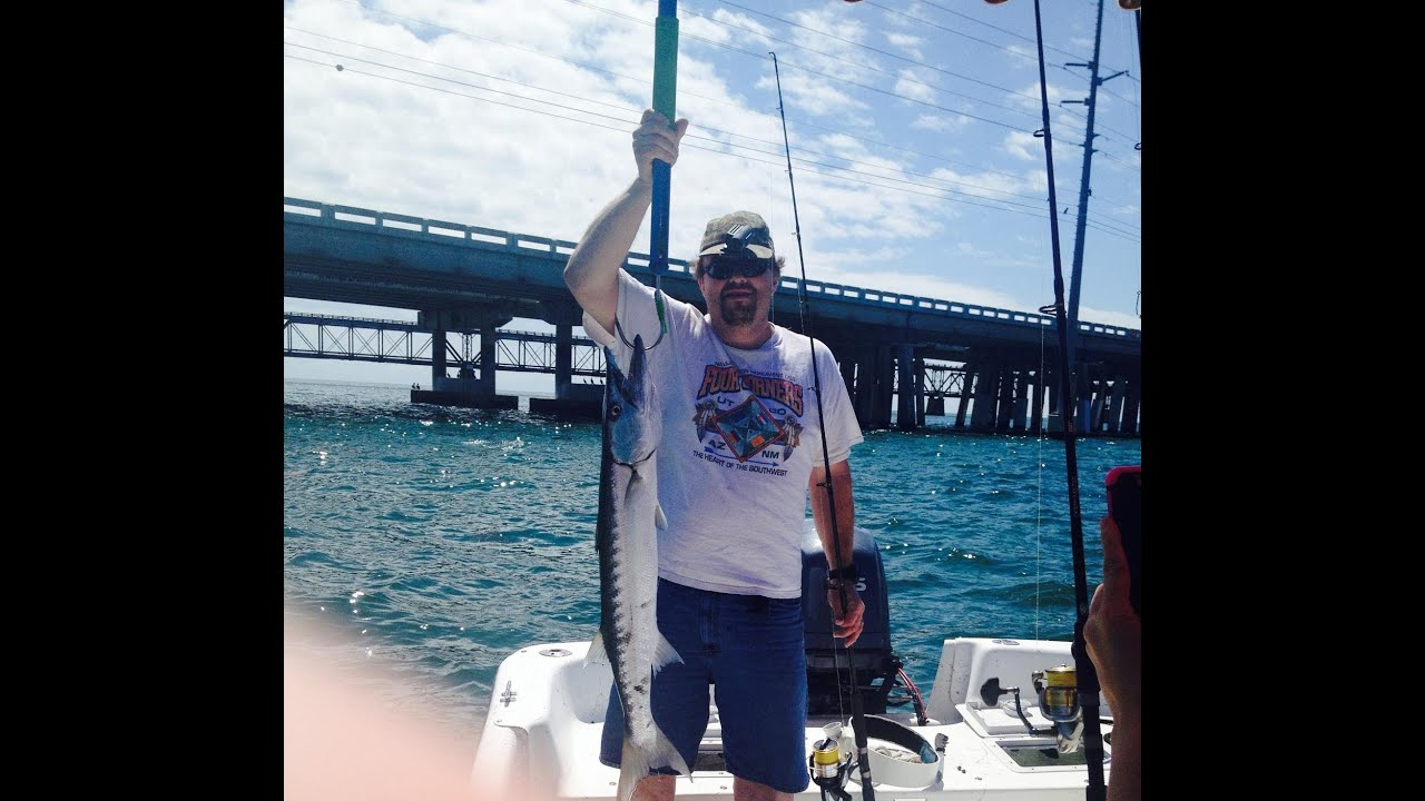 Barracuda fishing in the florida keys video at bahia for Out of state fishing license florida