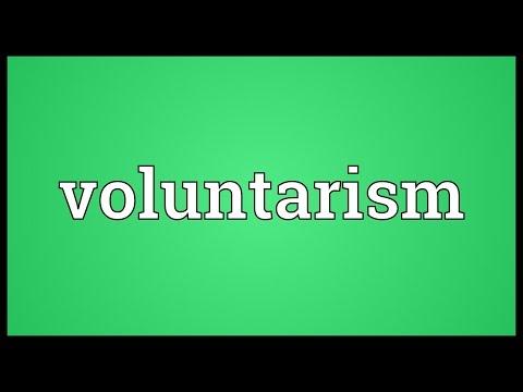 Header of voluntarism
