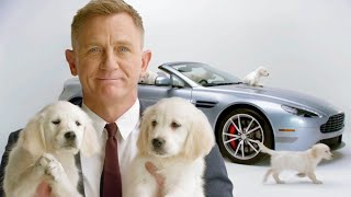 Daniel Craig and Puppies Present: Your New Aston Martin // Omaze