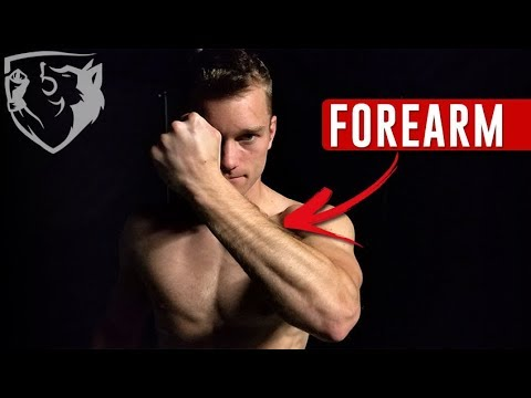 Forearm Strengthening Exercises for Fighters (Wrist, Fist, & Grip)
