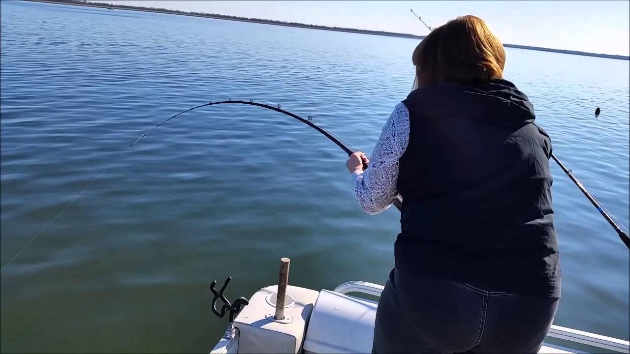 Catching arkansas blue catfish on lake marion youtube for Lake marion fishing report