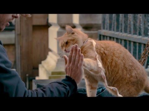 The origins of 'A Street Cat Named Bob'