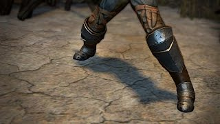 Path of Exile: Wasteland Warrior Boots