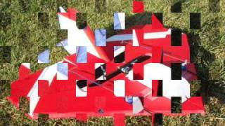 FireFly delta EPP RC Plane fast brushless