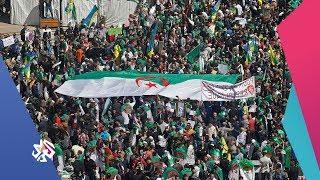 العربي اليوم | الجزائر .. تظاهرات مليونية