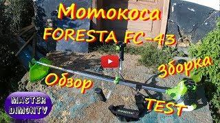 Мотокоса Foresta FC-43 Обзор,Зборка,ТЕСТ