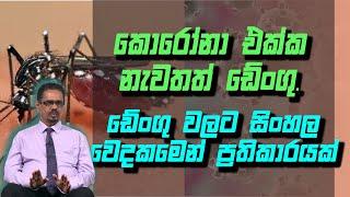 කොරෝනා එක්ක නැවතත් ඩේංගු. ඩේංගු වලට සිංහල වෙදකමෙන් ප්රතිකාරයක්|Piyum Vila | 23 - 10-2020|Siyatha TV Thumbnail
