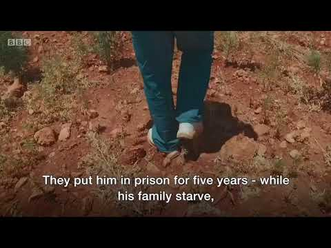 Lebanese farmer: Cannabis should be legal - BBC News