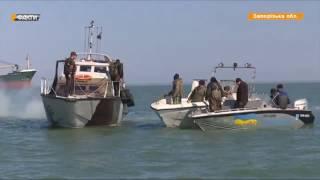 В Азовском море заканчивается рыба