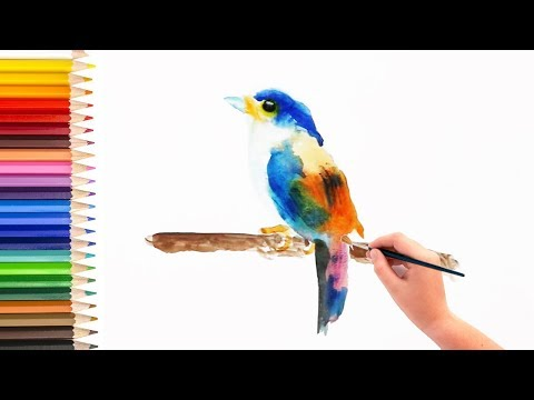 Watercolor painting tutorial – Painting a bird using Watercolor [初级水彩画教程] (Video for Beginners Kids)