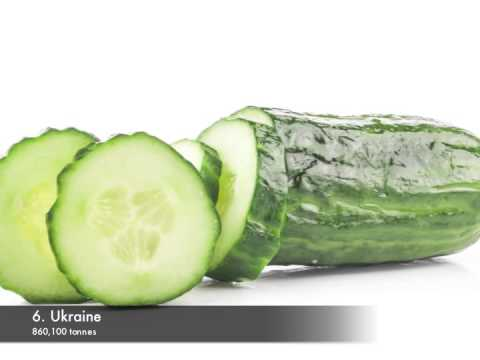 Top 10 cucumber producing countries