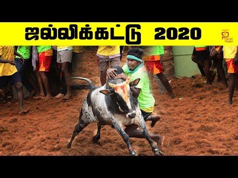 ஜல்லிக்கட்டு 2020   Trichy Manapparai Jallikattu 2020   #Jallikattu   Jallikattu Highlights