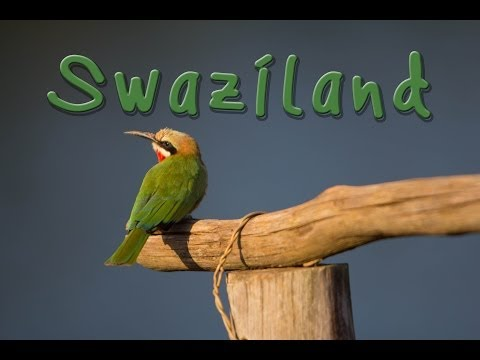 Swaziland and Mlilwane Wildlife Sanctuary