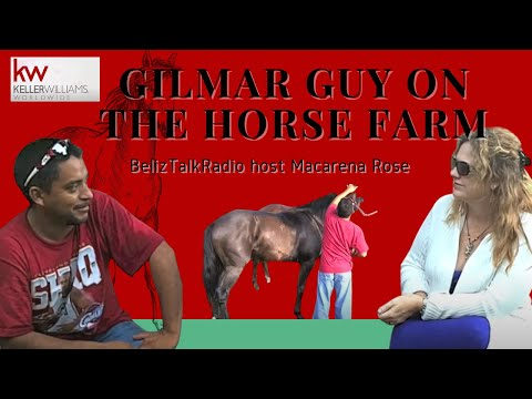 Belize Talk Radio host Macarena Rose interviews Gilmar Guy on the Horse Farm