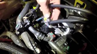 Dodge Dart MADNESS - MADNESS ECU Installation