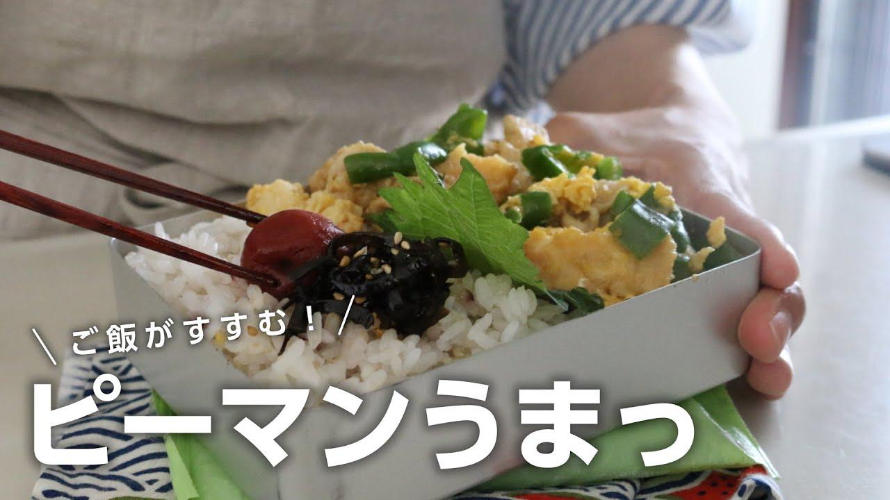 【お弁当作り】ピーマン大量消費にどうぞ!ピーマンチャンプル弁当bento#709