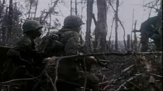 Vietnam War . Hamburger Hill/ Война во Вьетнаме . Высота Гамбургер