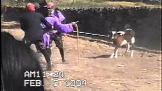 Los Diablos en Huecorio 1994