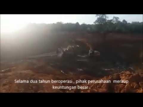 Inilah Bukti PT Kapital Madina Hutana Mining Sudah Beroperasi