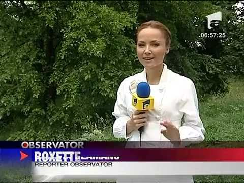 Roxette in Romania (Report on Antena 1, 25 May, 2011)