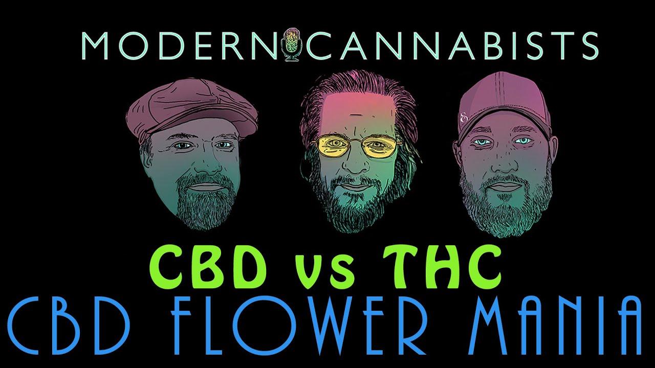 CBD Flower Hype: CBD vs THC - Modern Cannabists Podcast talk CBD hemp flower and its many positives