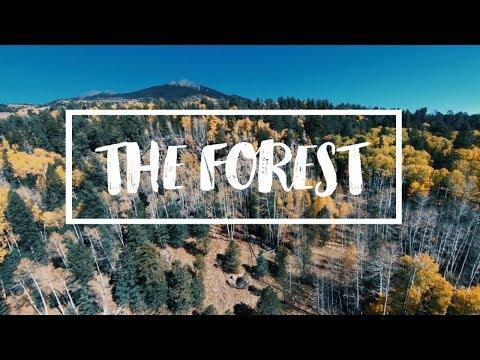 The Forest - Sam Kolder Inspired - GoPro HERO6 Black!