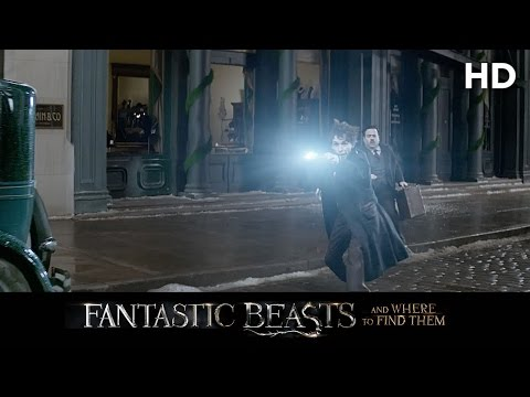 Fantastic Beasts and Where to Find Them (2016) A New Hero Featurette [HD]