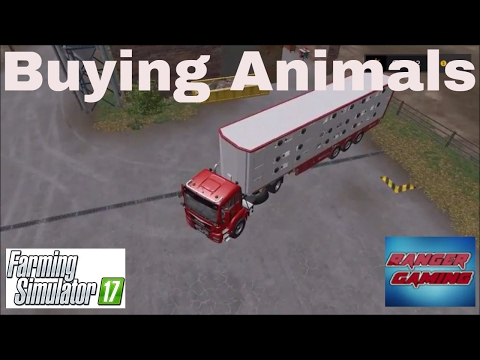 Farming Simulator 17 | Sandy Bay Episode 3 | Buying Animals