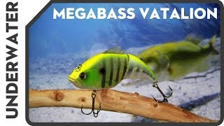 Смотри, что он вытворяет Vol.1 New 2017 Megabass Vatalion (поведение в воде) メガバス2017福袋
