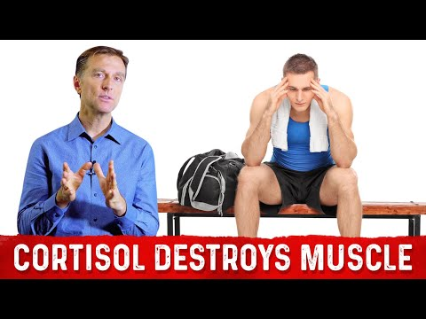 How Cortisol Can Destroy Muscle, Collagen & Other Proteins (Dr. Berg)