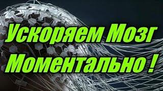 Мозг - Самые Неожиданные Факты. Как Легко Ускорить Мозг на 20 мин.,  Интеллект, Спорт, Память